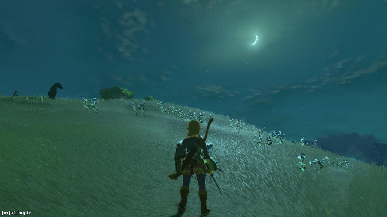 Legend of Zelda Link Meadow Night Wallpaper