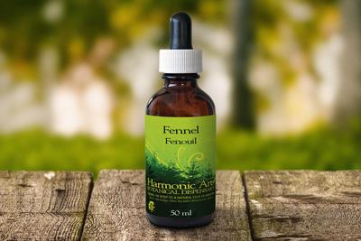 عرق رازیانه Tincture of fennel,خواص عرق رازیانه,طریقه مصرف عرق رازیانه,عرق رازیانه,رازیانه,tincture fennel,رازیانه گیاهی معطر,