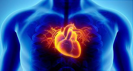 نشانه های مهم بیماری قلبی Heart disease,تشخیص بیماری قلبی, علائم بیماری قلبی در جوانان,  علائم ظاهری بیماری قلبی,مشکل قلبی,بیماری قلبی,تشخیص مشکلات قلب,قلب و عروق,اکو قلب,important heart disease,نشانه های مهم بيماری قلبی,
